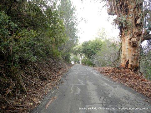 steep climb briones rd