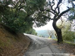 steep climb briones rd