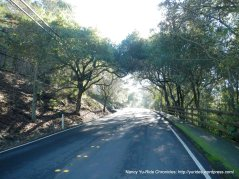 reliez valley rd climb