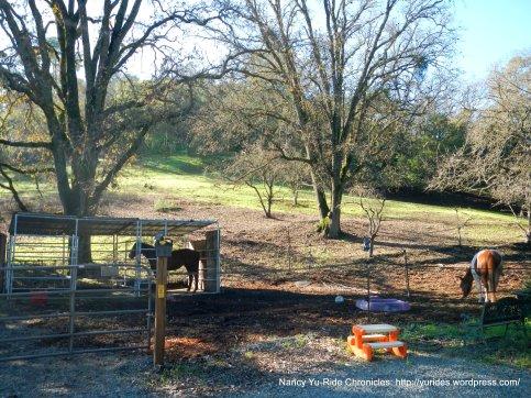 springhill rd ranch