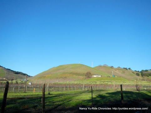 alhambra valley vineyard