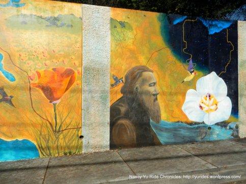 franklin cyn murals