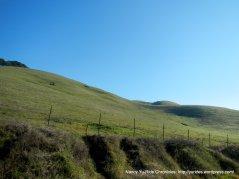 palomares rd landscape