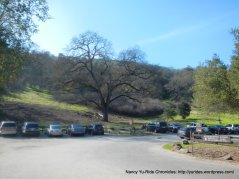 pleasanton ridge park