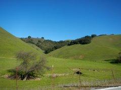 upper valley