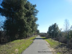coyote creek trail