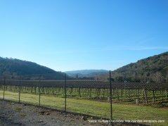 watsonville rd vineyards