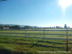 ranch-pastoral meadows