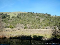 gilroy hot springs landscape