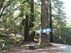 pema osel ling retreat