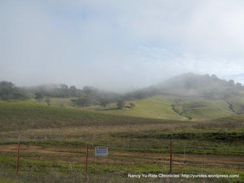 rolling grasslands