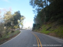 hicks rd-steep climb