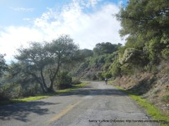 lower mt umunhum rd