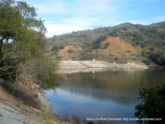 almaden creek