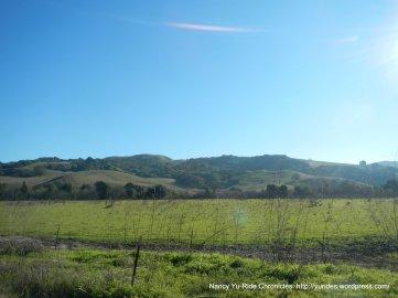 alhambra valley