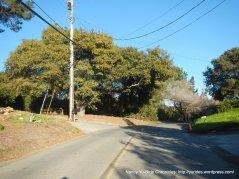 vine hill way climb