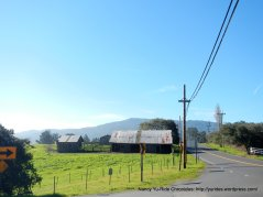 pt reyes station barn