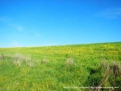 hwy 1 hills
