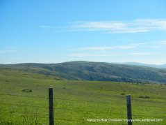 bolina ridge views
