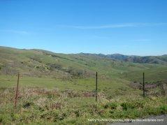 bolinas ridge views