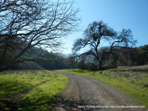 alhambra creek trail