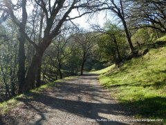alhambra creek trail