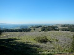 briones peak views