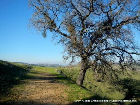 diablo view trail