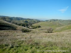 briones views