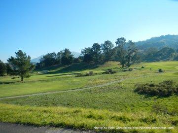 meadow club greens