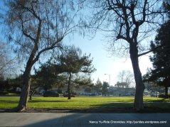 cataldi park