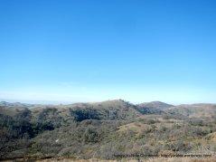 hamilton landscape