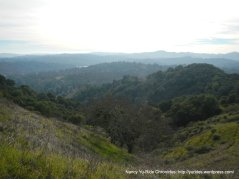 east bay hills view