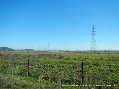 ramsey rd fields