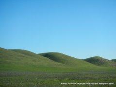 potrero hills