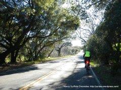 cordelia rd climb