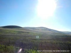 lopes rd landscape