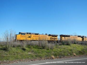 UP trains