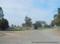 birds landing hunting preserve
