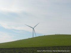 collinsville rd turbines
