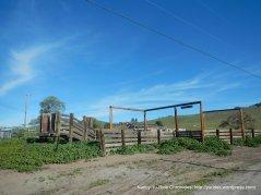 lone tree rd cattle pen