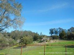 larkin valley ranch