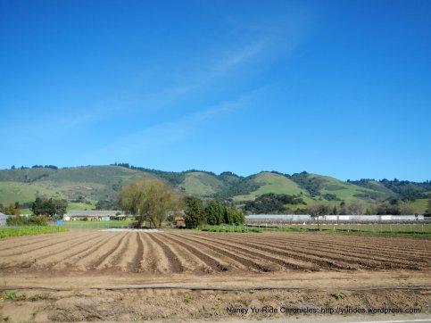 parajo valley