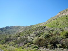 valley landscape