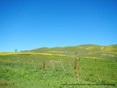cienaga valley
