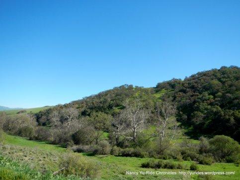 hollister hills