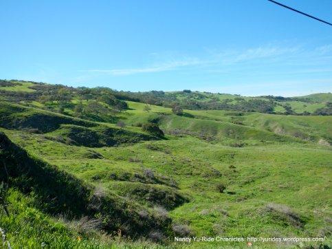 holliser hills