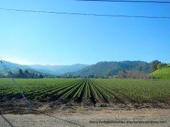 san juan valley