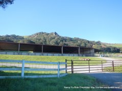 salinas rd ranch