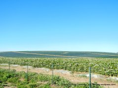 valley farmlands